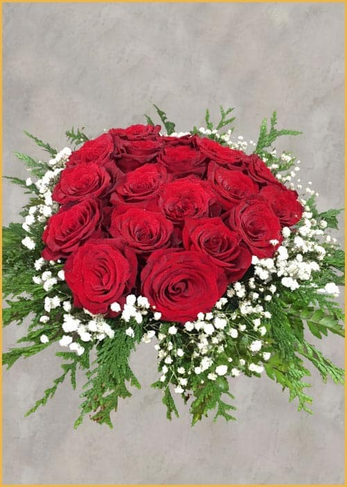red roses valentines day
