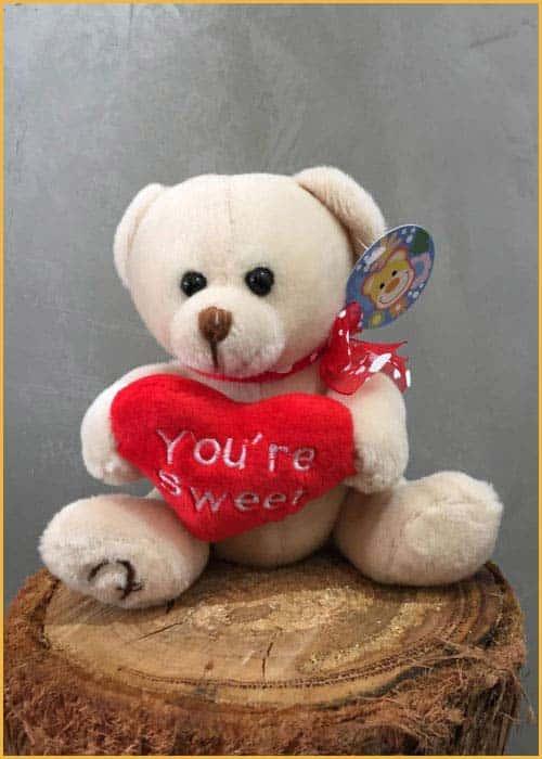 you're sweet teddy bear