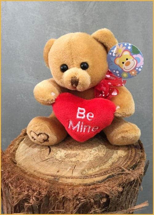 be mine teddy bear